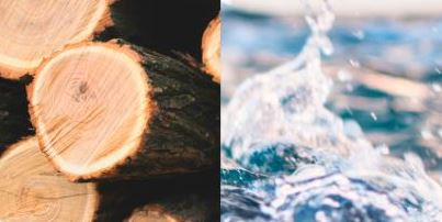 Skärmklipp_skog_vattenskydd_liten