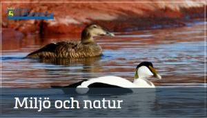 Miljö och natur_landskapsregeringen
